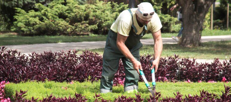 gardien immeuble jardinier